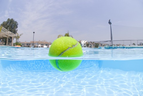 use-a-tennis-ball-to-absorb-oils